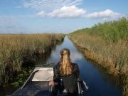 Florida-Everglades