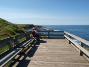 Nobbies,-Phillip-Island