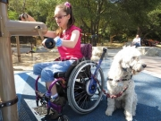 Inclusive Play Areas