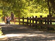 A-latina-woman-enjoying-nice-sunny-day-at-the-park