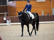 Boneo-Park,-Melbourne,-Australia.-18-October,-2017.-Equestrian-Australia-Para-Equestrian-Grade-4-Individual-Competition.-Little-Brave-ridden-by-Zoe-Vorenas